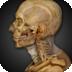 Anatomy & Physiology72