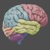 3D-Brain72